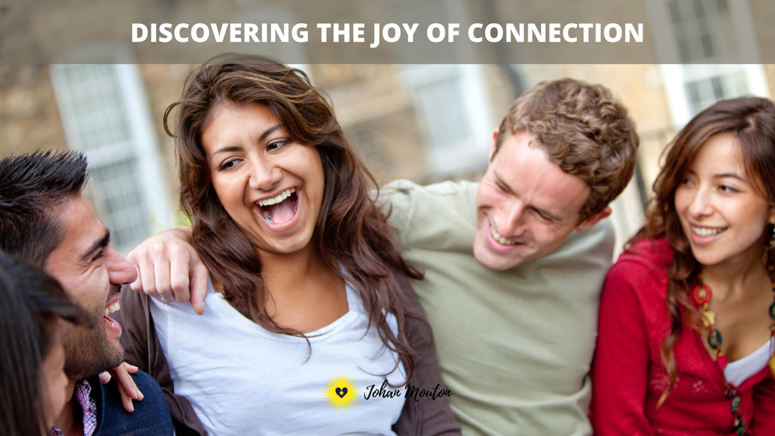 johanmouton.com, discovering the joy of connection.